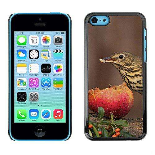 Premio Sottile Slim Cassa Custodia Case Cover Shell // F00003541 oiseau manger // Apple iPhone 5C