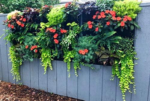 Amazon.com: Delectable jardín 12 bolsillos colgante vertical ...