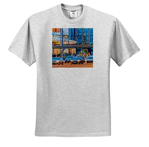 Alexis Photo-Art - Moscow City - Moscow Garden Ring Avenue Near Park Of Culture Metro Station, Winter - T-Shirts - Youth Birch-Gray-T-Shirt Small(6-8) (Metro Station Shirts)