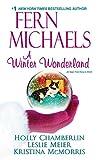 img - for A Winter Wonderland book / textbook / text book