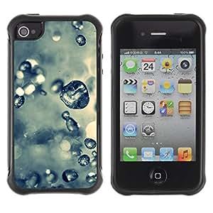 Pulsar Defender Series Tpu silicona Carcasa Funda Case para Apple iPhone 4 / iPhone 4S , Plant Nature Forrest Flower 61
