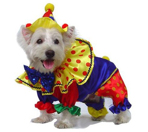 Shiny Clown Deluxe Costume for Dogs by Puppe Love (Size 2 (9.25