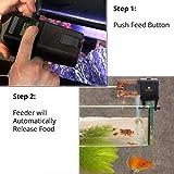 SunGrow Pleco Fish Wafer Feeder, Automatic Food