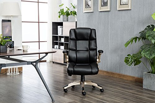Relax The Back Office Chair Reviews: KADIRYA Ergonomic High Back Leather Office Chair