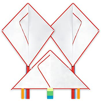 Single Line Ripstop Fabric In the Breeze 3213 Purple 43 Fly-Hi Kite Includes Kite Line and Bag