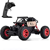 Toyard RC Cars for Boy/Girl - Remote Control Car Road Vehicle Toys for Boy 1: 16 Racing Car 4 WD Rally RC Car Rock Crawlers for Boys/Girls