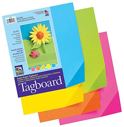 Pacon 1709 Colorwave Super Bright Tagboard, 9x12, 100-Sheet Assortment PAC1709