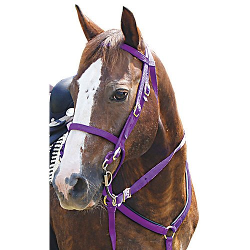 Mustang Western Poly Tack Set Red (Rolled Bridle)
