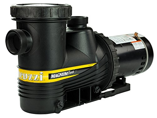Jacuzzi Magnum Force 2 HP In Ground Swimming Pool Pump by Jacuzzi