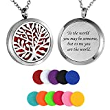 HooAMI Aromatherapy Essential Oil Diffuser Necklace - Stainless Steel Pendant Locket Jewelry,12 Refill Pads (to The World.)
