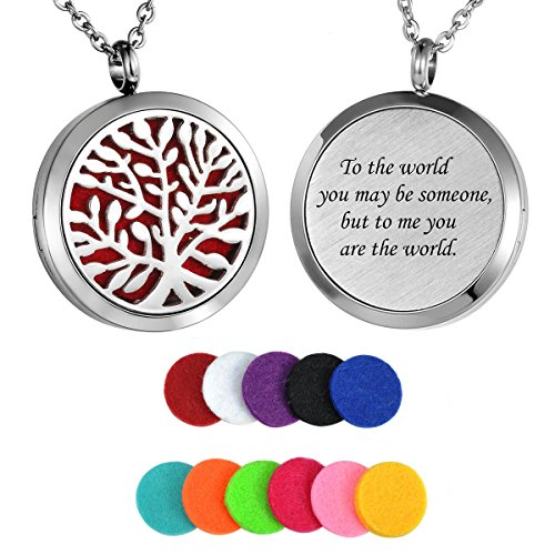HooAMI Aromatherapy Essential Oil Diffuser Necklace - Stainless Steel Pendant Locket Jewelry