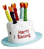 Forum Novelties Happy Birthday Cake Top Hat