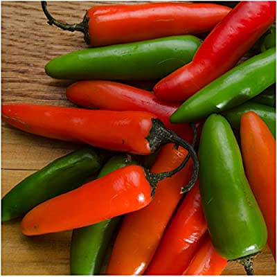Package of 100 Seeds, Serrano Chile Pepper (Capsicum annuum) Non-GMO Seeds by Seed Needs
