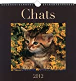 CALENDRIER CHATS 2012