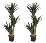 Pair AMERIQUE Gorgeous 5 Feet Tropical Yucca Trees Artificial Silk Plant, with Nursery Plastic Pots, UV Protection, Feel Real Technology, Super Quality