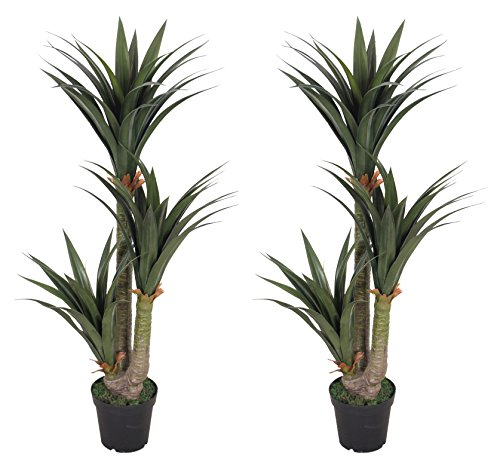 Pair AMERIQUE Gorgeous 5 Feet Tropical Yucca Trees Artificial Silk Plant, with Nursery Plastic Pots, UV Protection, Feel Real Technology, Super Quality by AMERIQUE