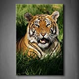 Bengal Tiger Panthera Tigris Bengalensis Laying In Thick Grass Openmouthed Wall Art Painting The Picture Print On Canvas Animal Pictures For Home Decor Decoration Gift