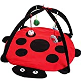Cat Play Activity Center Mat with Hanging Toys & Mice, Pet Kitten Padded Bed To Helps Cats Get Exercise & Stay Active (M, Red)