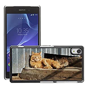 Hot Style Cell Phone PC Hard Case Cover // M00130045 Cat Animal Pet View Cute Cat'S Eye // Sony Xperia Z2 L50W