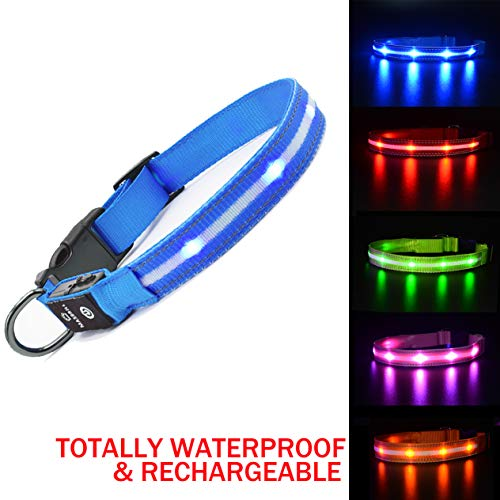 620 Usb - MASBRILL LED Dog Collar-USB Rechargeable Light Collar- Safety Collar for Small Medium Large Dogs (L(23.620.98inch), Blue)