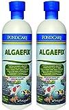 (2 Pack) Aquarium Pharmaceuticals PondCare AlgaeFix, 16 Ounce each