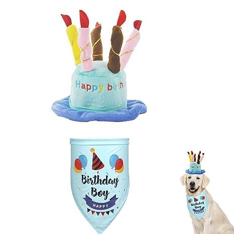Gorro de cumpleaños para mascota con bandana, sombrero de ...