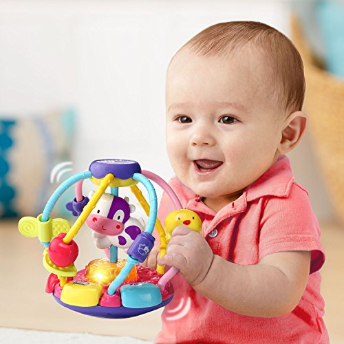 (VTech Baby Lil' Critters Shake and Wobble Busy Ball Amazon Exclusive, Purple)