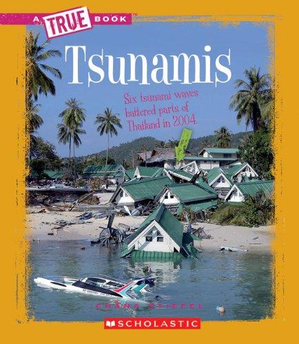 Tsunamis (True Books: Earth Science (Paperback))