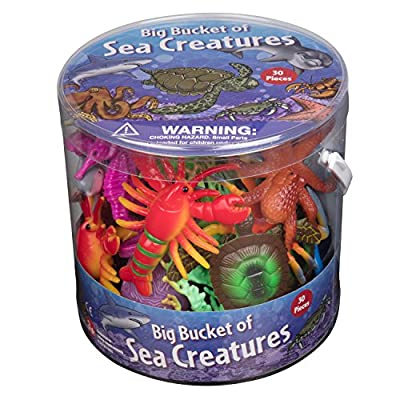 Ocean Life Play Set: Toys & Games