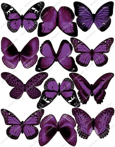 PURPLE Butterfly Cake Topper Mixed Species 20pc Birthday Violet Lilac Lavender
