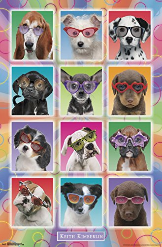 Trends International Puppies-Sunglasses Premium Wall Poster, 22.375