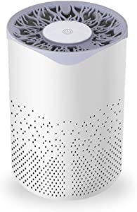Air Purifier-Carbon Filter for Home Large Room;heap Washable Filter for Bedroom;LED Night Light, Sleep Mode,Touch Button,100% Ozone Free Captures air cleanerAllergens,Odors,Smoke, Mold,Germs,Pets