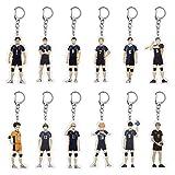 Apehuyuan Anime Haikyuu Carabiner Key Chain with