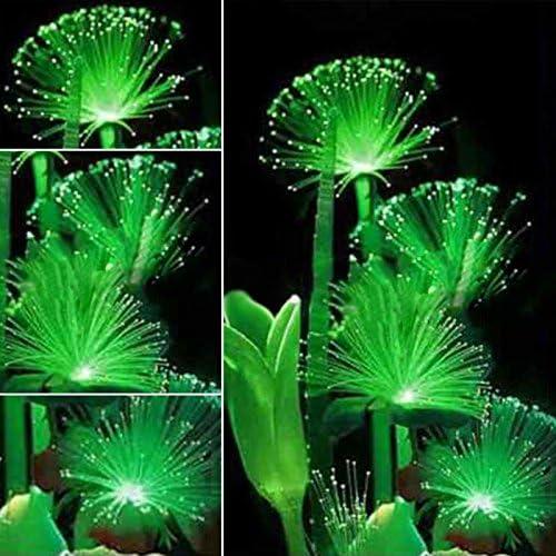 100stk Seltene dunkle Nacht leuchtende fluoreszierende Blumensamen Garten grüne