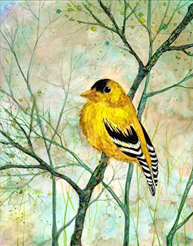 Golden Finch 8