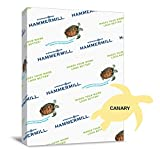 Hammermill Paper Colors pLGSf Canary, 24lb., 8.5x11, Letter 500 Sheets (6 Pack) twsbx