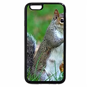 iPhone 6S Plus Case, iPhone 6 Plus Case (Black & White) - Eastern Swallowtail