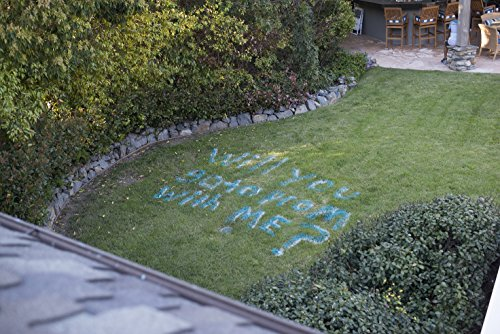 Testors 307589 Spray Chalk, 6 oz, Blue