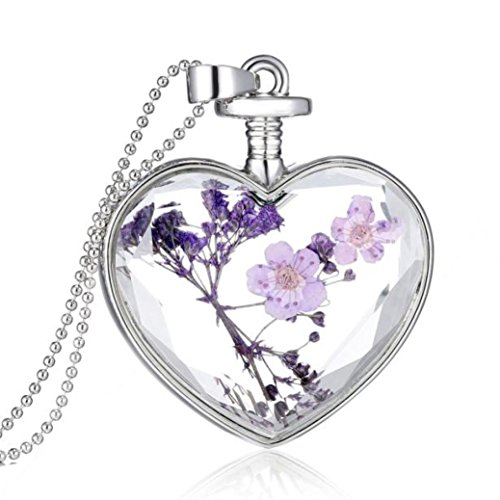 Mother's Day Gift, Muranba Women Dry Flower Heart Glass Wishing Bottle Pendant Necklace (006) Flowers Multi Strand Necklace
