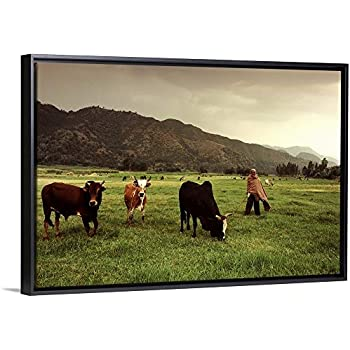 Ethiopian Farmer and in Fertile Pasture Black Floating Frame Canvas Art, 26