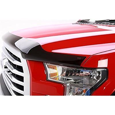 EGR 303471 Bug Shield: Automotive