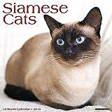 Siamese Cats 2019 Wall Calendar