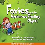 Foxies and the Mysterious Floating Object | B.K. Bradshaw,S.K. Bradshaw