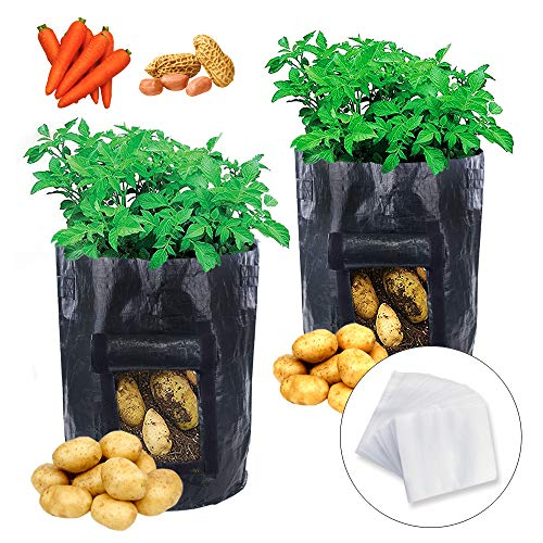 JPSOR 2pcs Potato Grow Bags 10 Gallon with 100pcs Nursery Bags,Garden Vegetables Planter Bags with Flap and Handles Heavy Duty Suitable for Potato, Carrot, Tomato (Black) by JPSOR