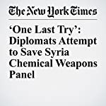 'One Last Try': Diplomats Attempt to Save Syria Chemical Weapons Panel | Rick Gladstone