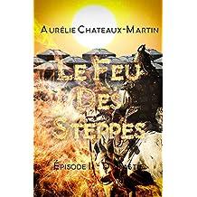 Le Feu des Steppes - Épisodes 11 Dynastie (French Edition)