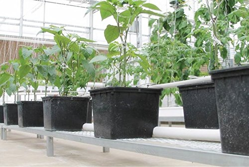 10 - Pack Hydroponic Dutch Bucket Pot, 11 Liter, with Siphon Elbows, 12' x 10' x 9', Black