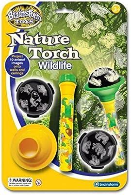 Safari y animales salvajes linterna con proyector - Lámpara de ...