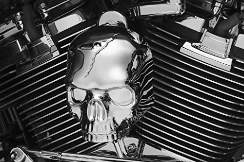 - Kuryakyn 17-18 W/Stk Horn Cvr Skull Horn Cover Chr 5730 New