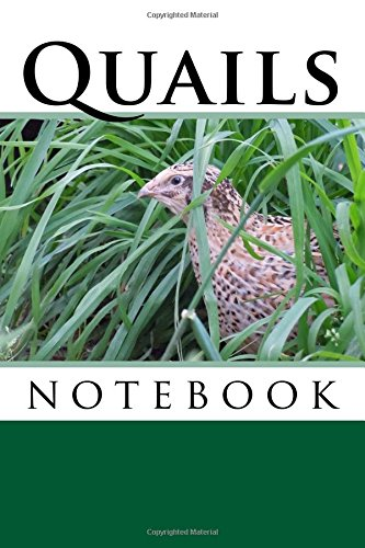 Download Quails: 150 page lined notebook PDF